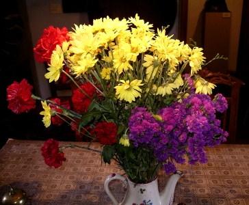 flores-republica